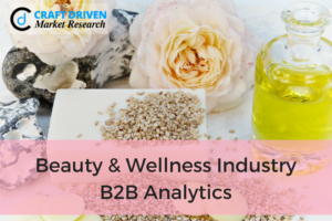 Beauty and Wellness Industry: B2B Analytics and its Scope in Industry
