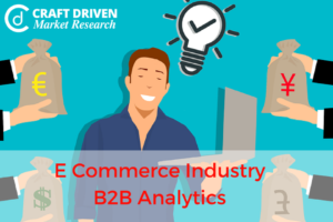 E Commerce Industry: B2B Analytics and its Scope in Industry