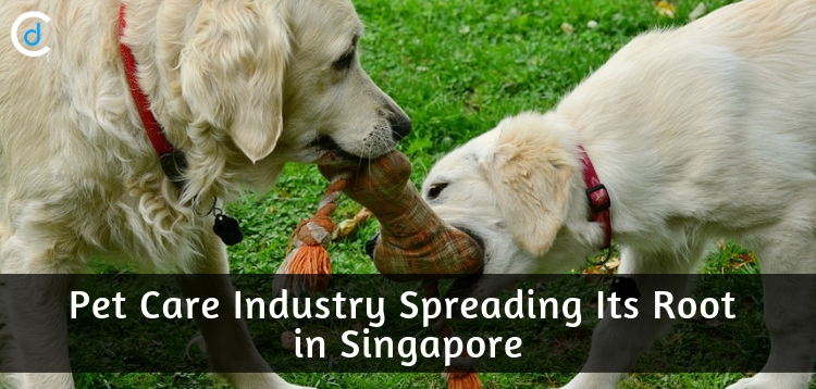 Pet Care Industry Singapore