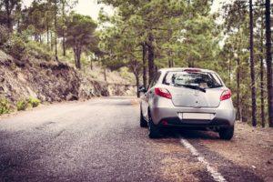 Self-Drive Rental Car Industry in India