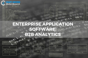 Enterprise Application Software Solutions: B2B Analytics and its Scope in Industry